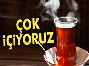 Dünyada en fazla çayı Türkler içiyor