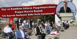 Etçi ve Kombine Irkların Yaygınlaştırılması Projesi Kars'tan Başlatıldı
