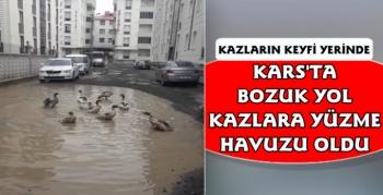 Kars'ta Bozuk Yolda Kazların Yüzme Keyfi