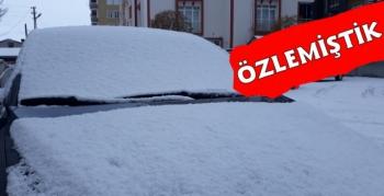 Kars'ta Gece Saatlerinde Kar Yağışı Etkili Oldu