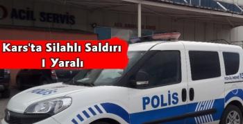 Kars'ta Park'ta Silahlı Saldırı 1 Yaralı