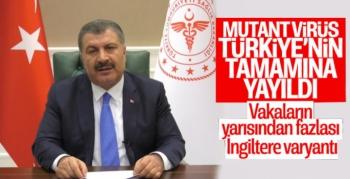 Mutasyonlu Virüs Türkiye'nin Tamamına Yayıldı