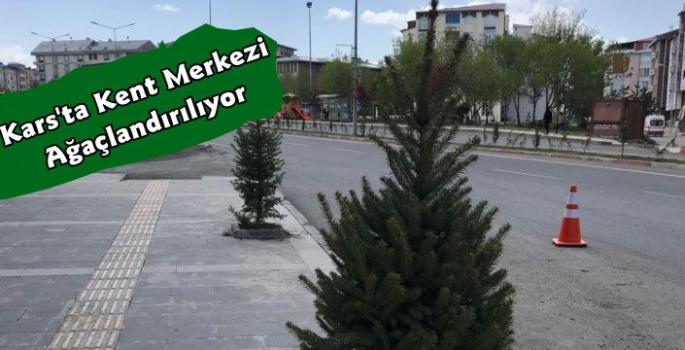 Kars Belediyesi'nden Ağaçlandırma Çalışması