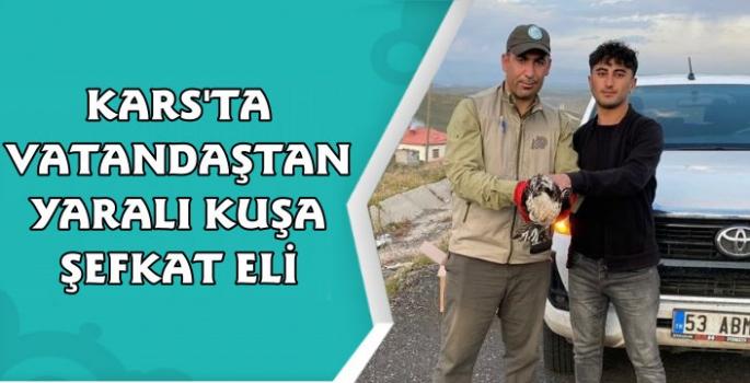 Kars'ta Yaralı Bulunan Gökdoğan Kuşuna Yardım Eli